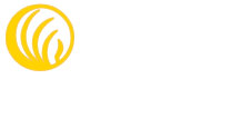 Home Page Nami Wood County